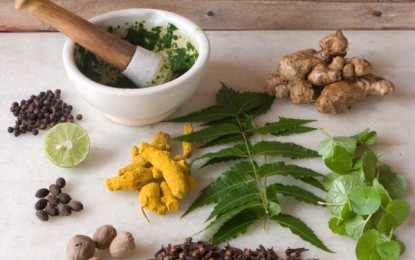 Treatment of Chronic Diseases makes Ayurveda More Popular