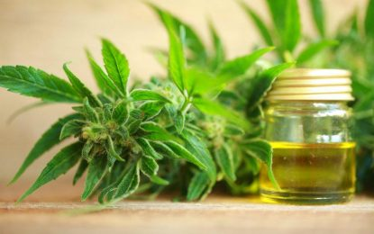 When to Feel the Effects of Cannabidiol and for How Long