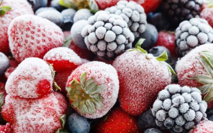 Are Frozen Foods Healthy for your Consumption?