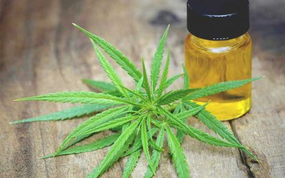 CBD Oil – How Beneficial Can Pure CBD Oil Be For You!