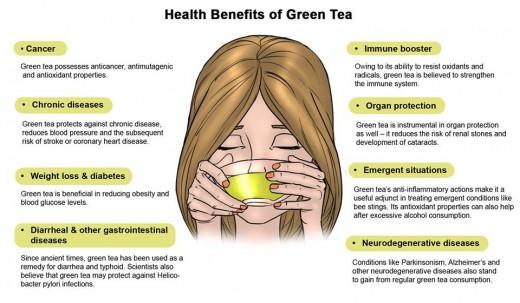 Can green tea cure obesity induced arthritis