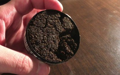 Elicit Herbal Chew: Staying Off Tobacco Doesn't Get Easier Than This!